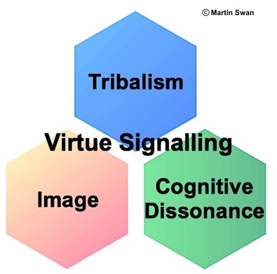 Virtue Signalling internal drivers, Cognitive Dissonance,